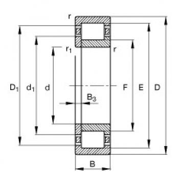 المحامل NUP308-E-TVP2 FAG
